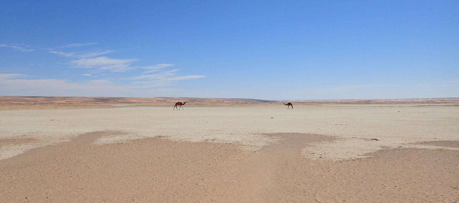 l'œil de l'Afrique - Deserts eye